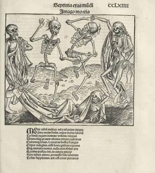 Магчыма гравюра выканана  маладым Альбрэхтам Дзюрэрам