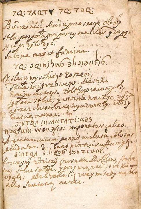 рукапісны тэкст чарнілам на лацiнскай мове